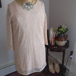Blush Lace Sheath Dress XL